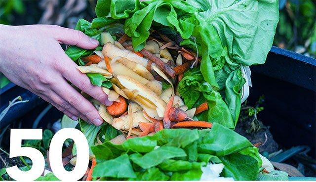 Create a compost bin